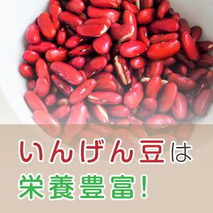 いんげん豆は栄養豊富!