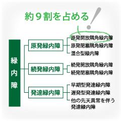 緑内障の種類