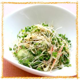ブロッコリースプラウトの彩りサラダ
